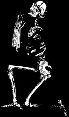 skeleton-33847_960_720
